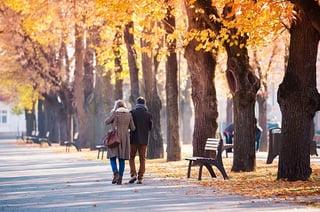 people_walking_in_town