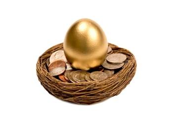 golden egg in a nest of money