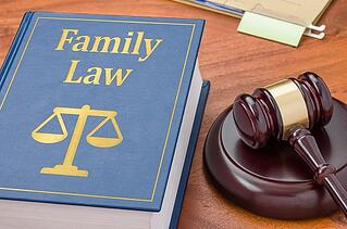 A gavel and a book on family law