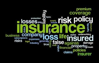 insurance_insured_wordcloud